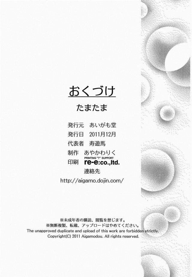29doujinshi15112645